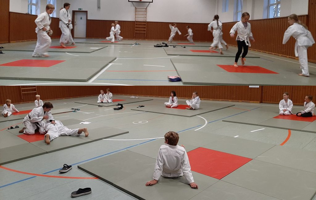 Judo mit neuem Trainerteam